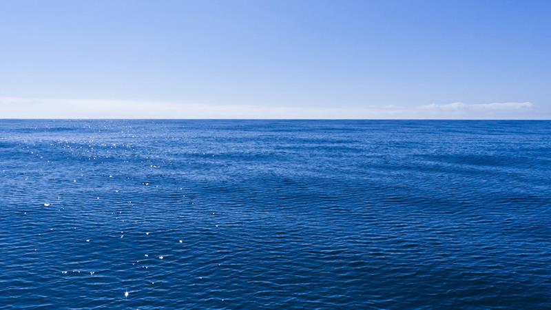 Formación para navegar en océanos azules