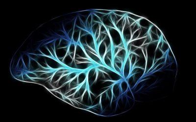 Neuromarketing. Desnudando el cerebro consumidor